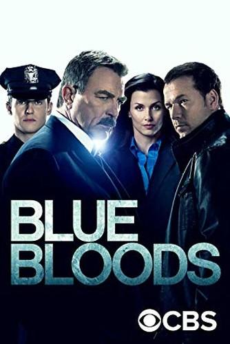 Blue Bloods S10E06 Glass Houses REPACK 1080p AMZN WEB-DL DDP5 1 H 264-NTb