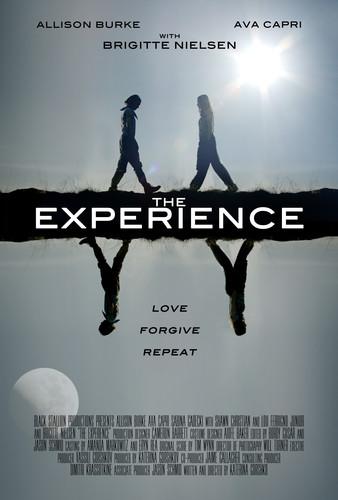 The Experience 2019 1080p WEB-DL H264 AC3-EVO