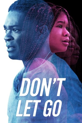 Dont Let Go (2019) 1080p WEB-DL H264 AC3-EVO