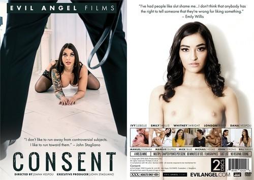 Consent DiSC1