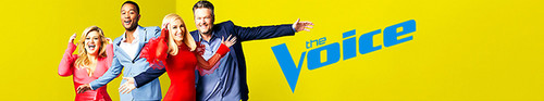 The Voice S17E16 XviD-AFG