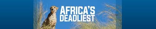 Africas Deadliest S04E01 Arms Race WEBRip x264-CAFFEiNE