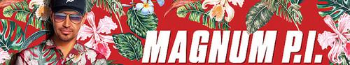 Magnum P I 2018 S02E08 720p HDTV x264-AVS