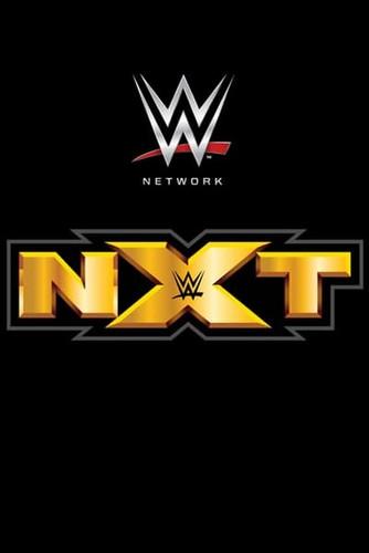 WWE NXT 2019 11 13 WEB x264-ADMIT