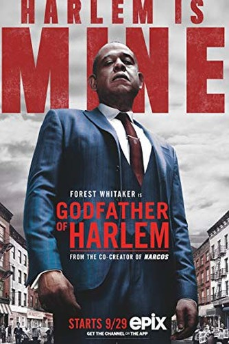 Godfather of Harlem S01E08 XviD AFG