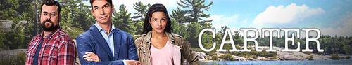 Carter S02E07 HDTV x264-CROOKS