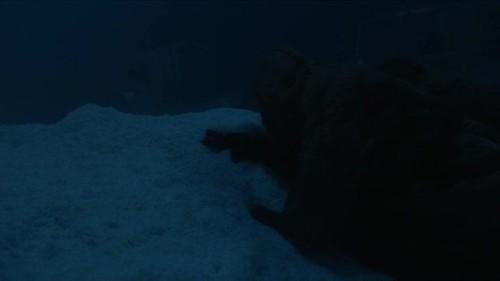 His Dark Materials S01E05 HDTV x264-BRISK