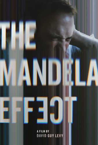 The Mandela Effect 2019 1080p WEB-DL DD5 1 x264-CMRG