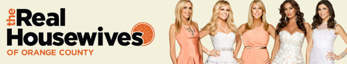 The Real Housewives of Orange County S14E19 Some Fences Are Made to Be Broken HDTV x264-CRiMSON