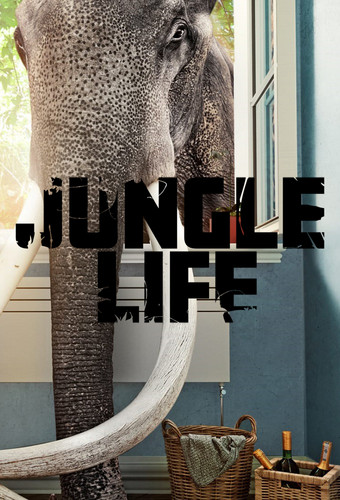 Jungle Life S01E01 Going Off the Grid WEB x264-CAFFEiNE