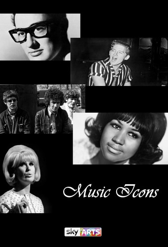 Music Icons S01E06 Chuck Berry HDTV x264-LiNKLE