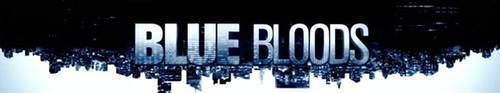 Blue Bloods S10E11 HDTV x264-SVA