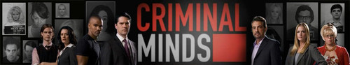 Criminal Minds S15E02 XviD-AFG