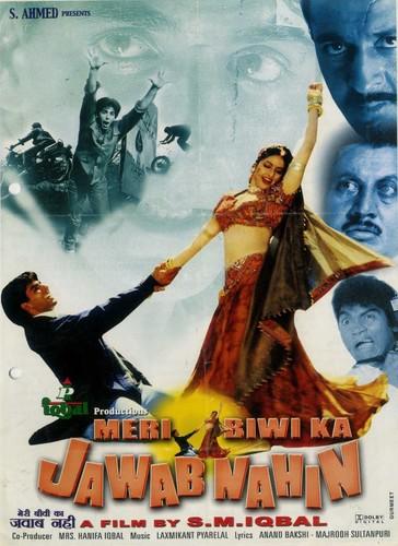 Meri Biwi Ka Jawab Nahin (2004) 1080p WEB-Rip AVC AAC-DUS
