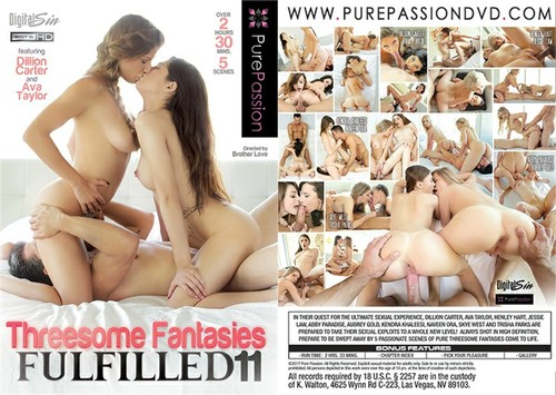 Threesome Fantasies Fulfilled 11