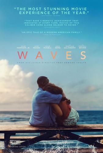 Waves 2019 DVDSCR XviD AC3-EVO