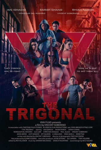The Trigonal Fight For Justice 2020 HDRip XviD AC3-EVO
