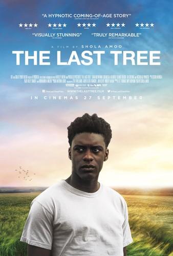 The Last Tree 2019 BRRip XviD AC3-EVO