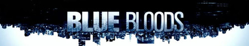 Blue Bloods S10E13 HDTV x264-SVA