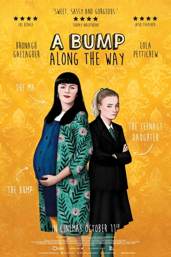 A Bump Along The Way 2019 1080p WEB-DL H264 AC3-EVO