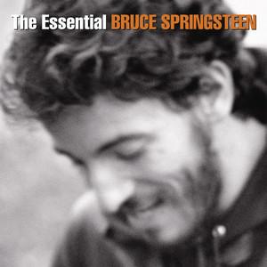 Bruce Springsteen - The Essential Bruce Springsteen (2015) (320)