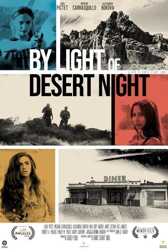 By Light Of Desert Night 2020 1080p WEB-DL H264 AC3-EVO