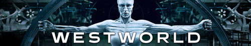 Westworld S03E03 The Absence of Field 720p AMZN WEB-DL DDP5 1 H 264-NTb