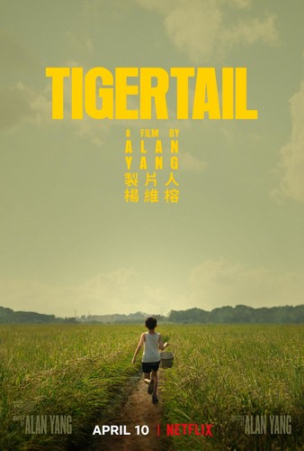 Tigertail 2020 1080p NF WEB-DL DDP5 1 x264-CMRG