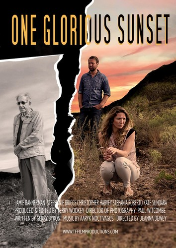 One Glorious Sunset 2020 1080p AMZN WEBRip X264 DDP 2 0-EVO