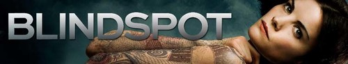 Blindspot S05E04 And My Axe 720p AMZN WEB-DL DDP5 1 H 264-NTb
