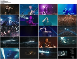 Goitzsche Front - Live In Berlin (2020) [Blu-ray]